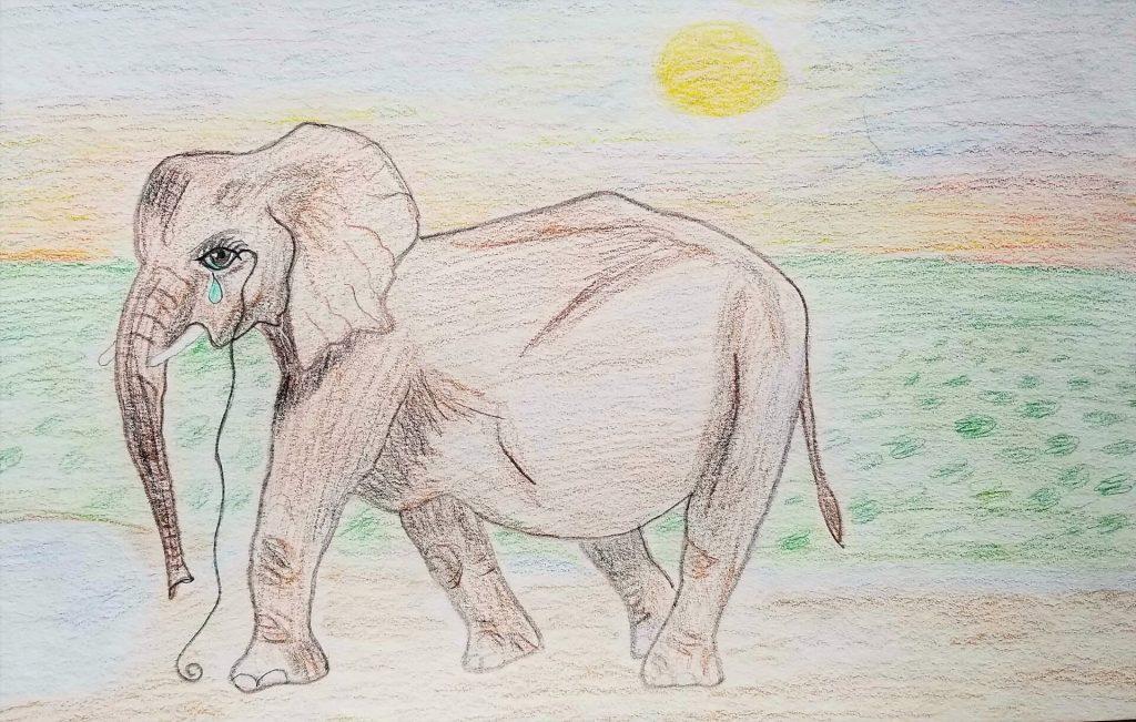 Drawing of Ellie by Teresa Nguyen